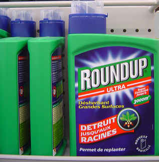 Dr Cattani: Roundup Causes Toxic Damage to Rat Brains