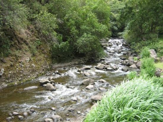 streams-12259