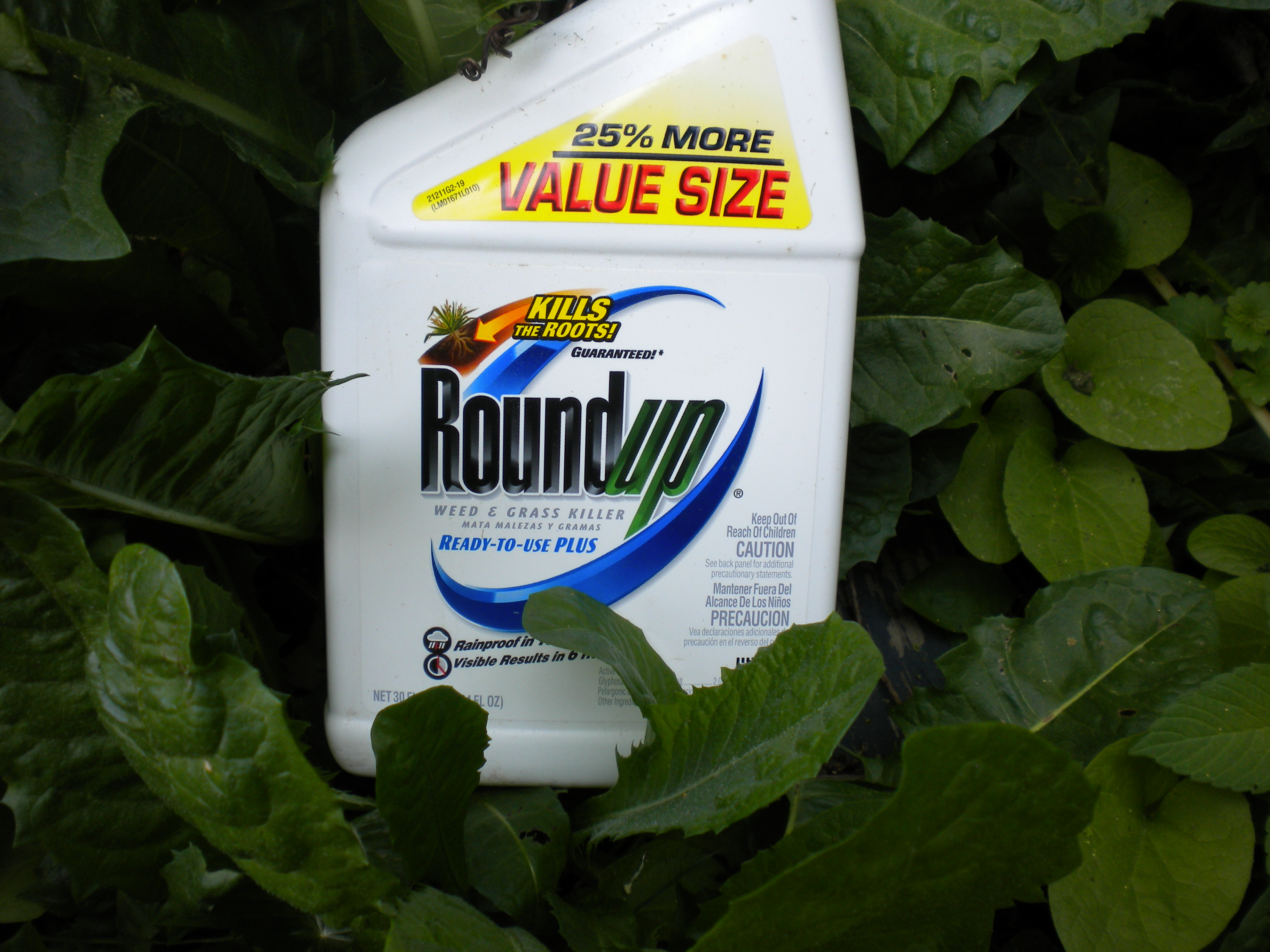 Dr Krüger: Chronically Ill Humans Have Higher Glyphosate Levels than Healthy Humans