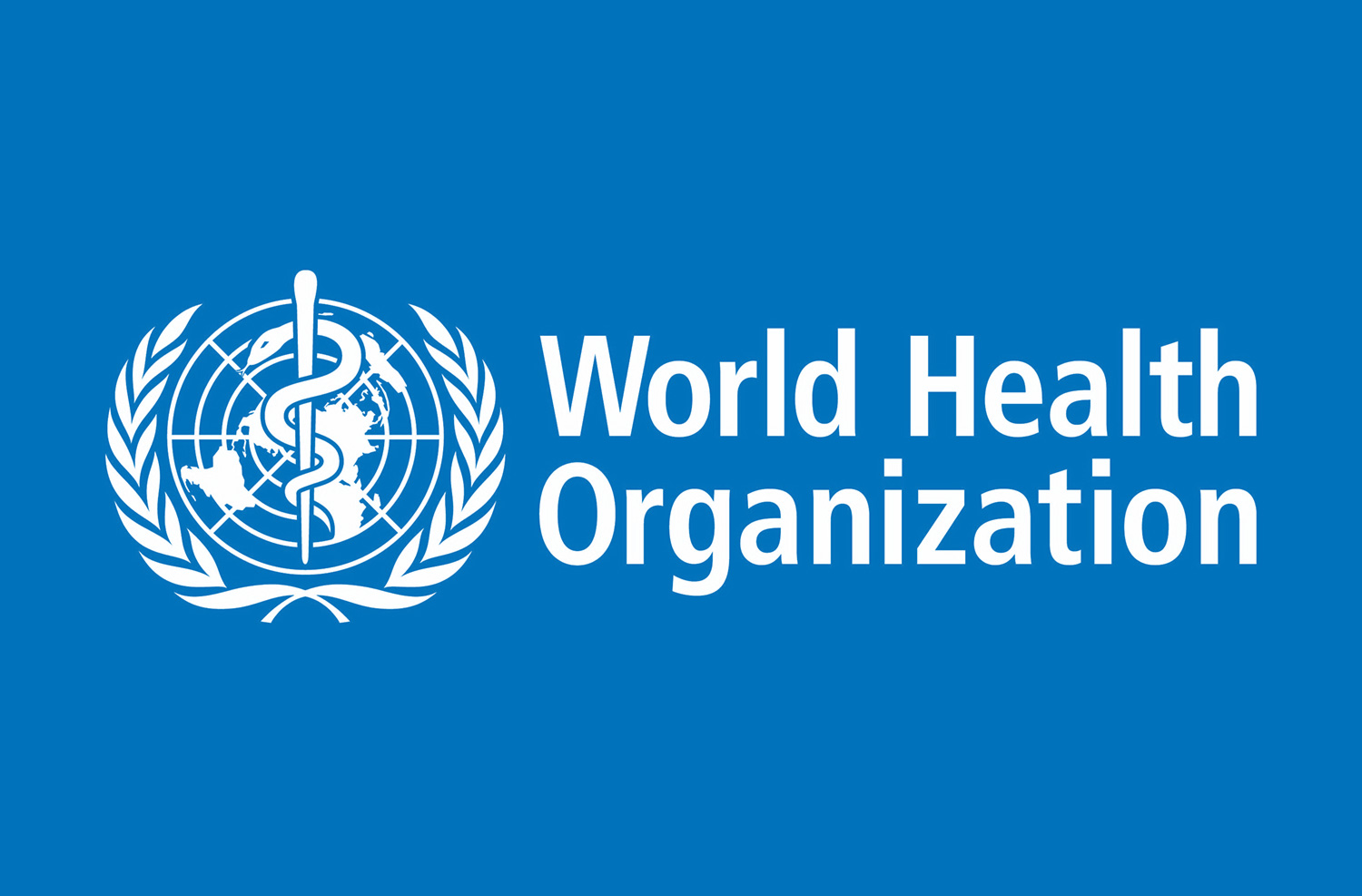 Zonal Data Assistant at World Health Organization (WHO)